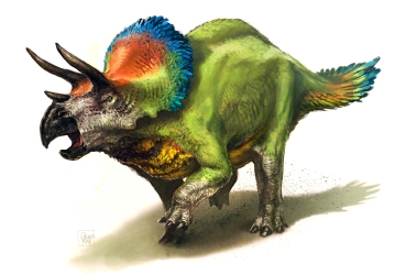 Parrotceratops s
