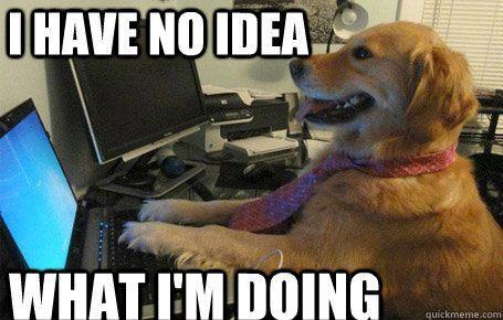 dog-computer-meme.jpg